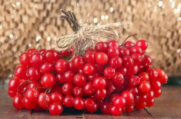 Как приготовить ягоды калины для снижения давления