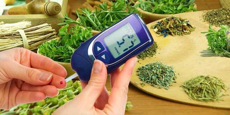 Травы при диабете второго типа: какие растения снижают уровень сахара